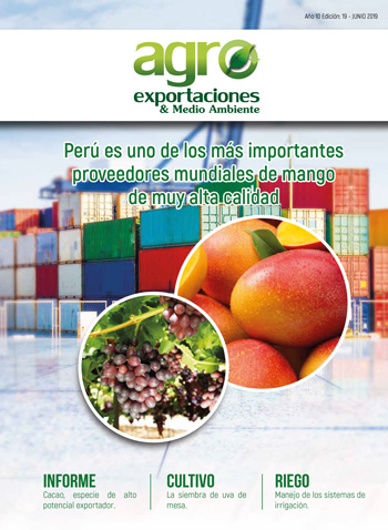 Revista Agroexportaciones & Medio Ambiente Nº 19
