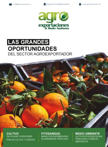 Revista Agroexportaciones & Medio Ambiente Nº 26
